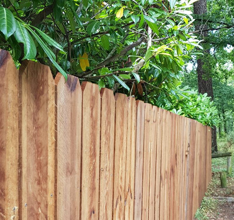 clôture bois lège cap ferret